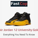 Air Jordan 12 University Gold - Price, Release, and Where To Buy